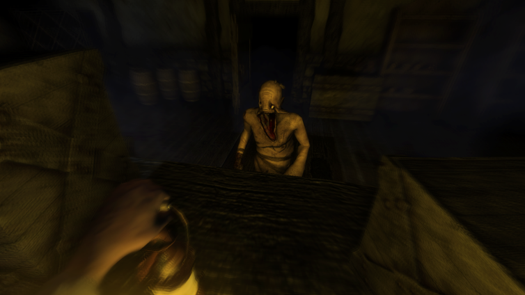 Amnesia: Collection Screenshot 4